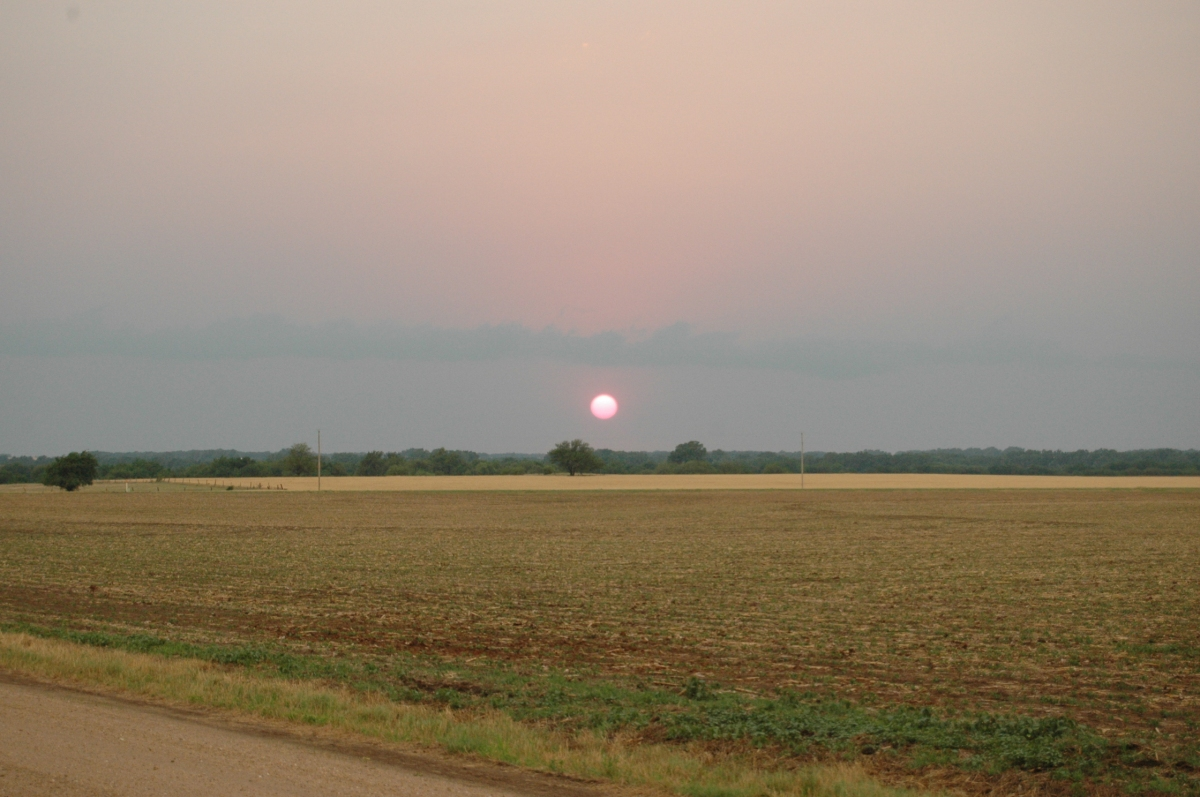 Sunset over a field - Safe Haven Farm, Haven, KS