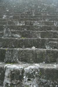 Stone steps at Tikal - Peten, Guatemala