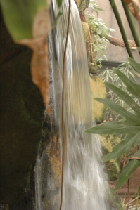 Waterfall in Sedgwick County Zoo Jungle Exhibit - Wichita, KS