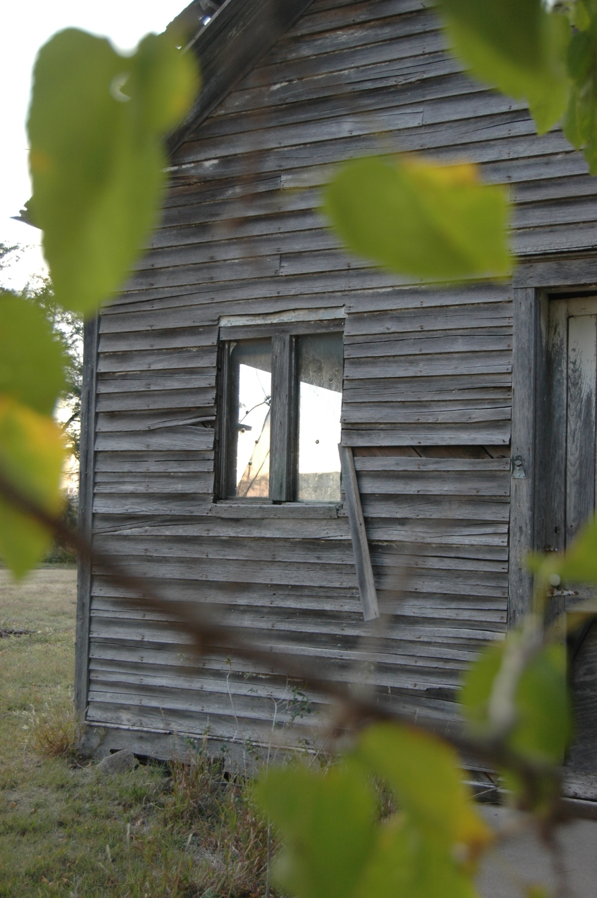 School house window - Safe Haven Farm, Haven, KS