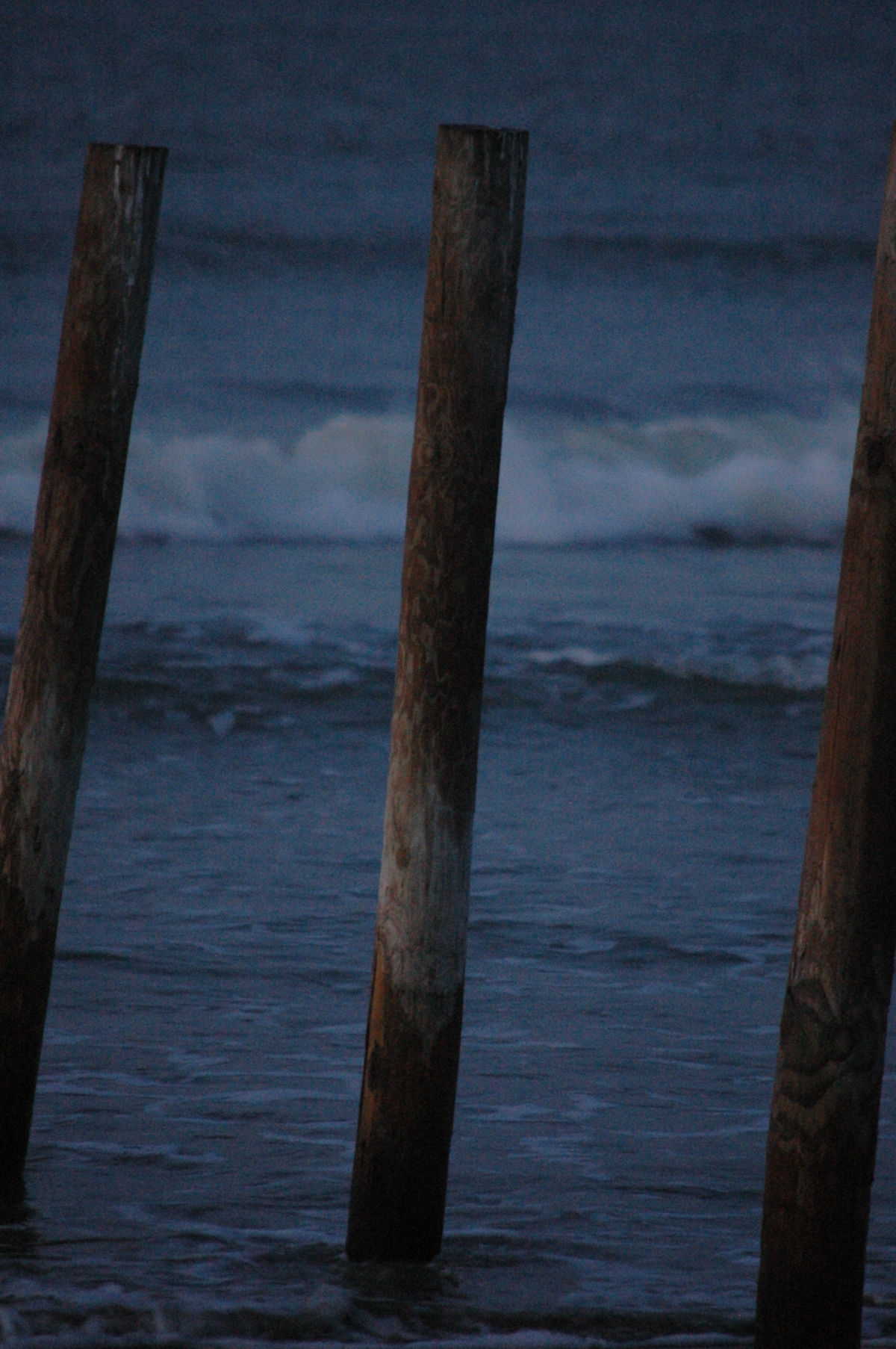 Posts on Jamaica Beach at sunrise - Galveston, TX