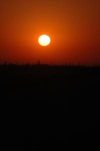 Sunrise over Safe Haven Farm - Haven, KS
