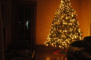 Christmas tree in the living room of Safe Haven Farm, Haven, KS