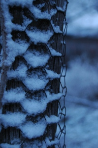 Snow on the chicken wire at Safe Haven Farm, Haven, KS