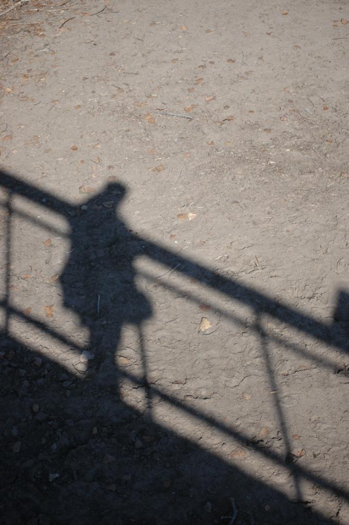 My shadow at the Sedgwick County Zoo, Wichita, KS