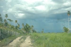 Rough road to San Miguel Alto Uno, Peten, Guatemala
