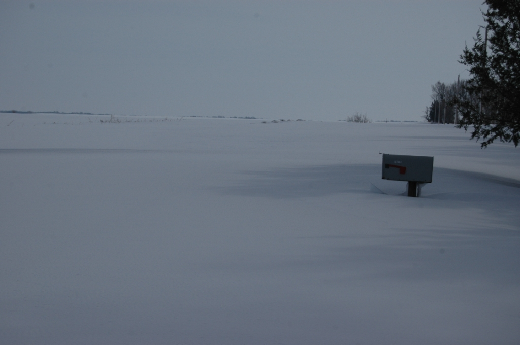 The mailbox between the road and the driveway yesterday morning at Safe Haven Farm, Haven, KS