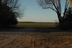 Facing north at Safe Haven Farm, Haven, KS