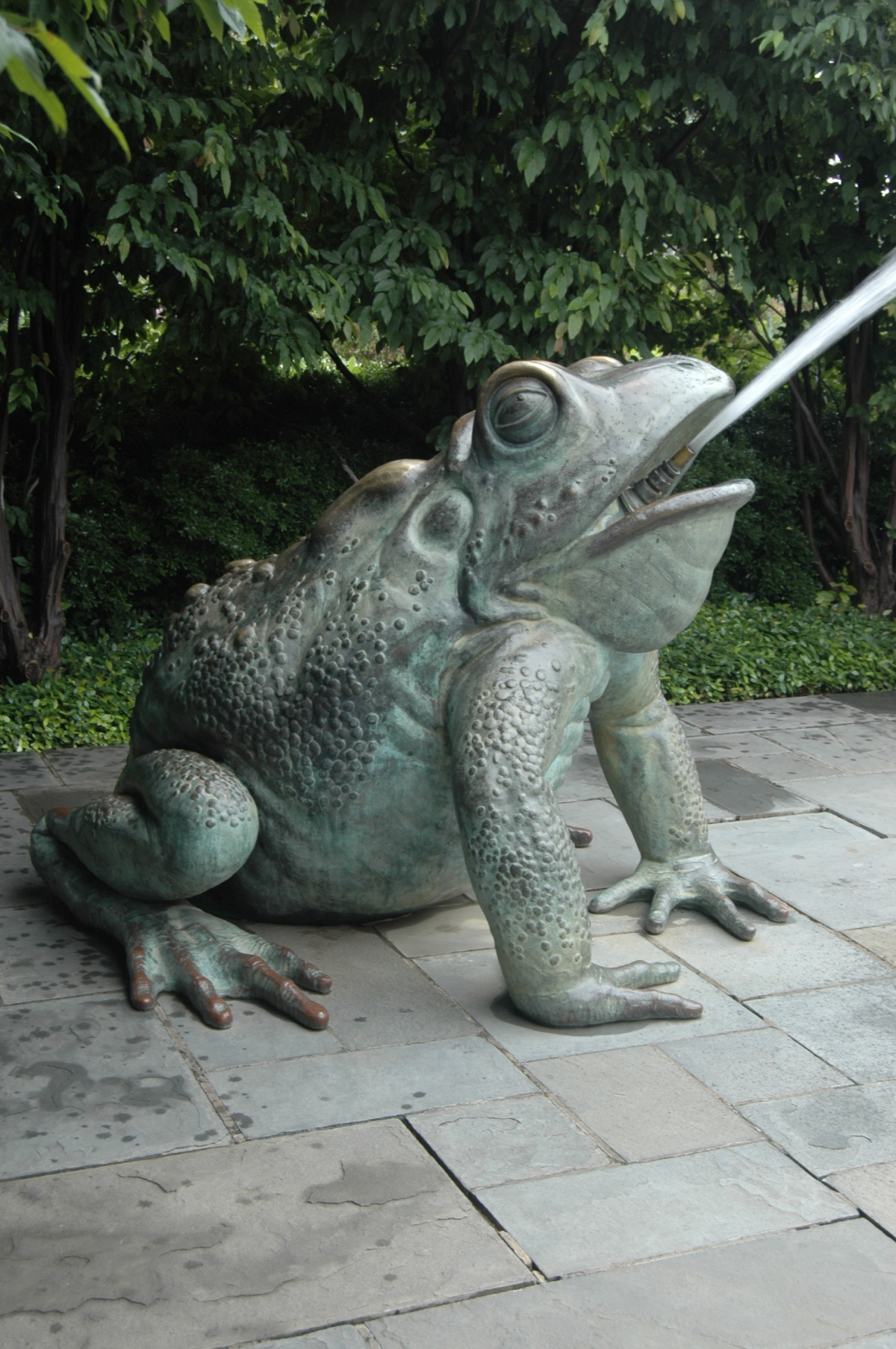 Cement frog spitting water at the Dallas Arboretum, Dallas, TX