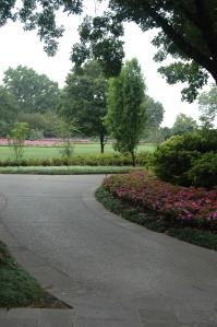 A curving path at the Dallas Arboretum, Dallas, TX