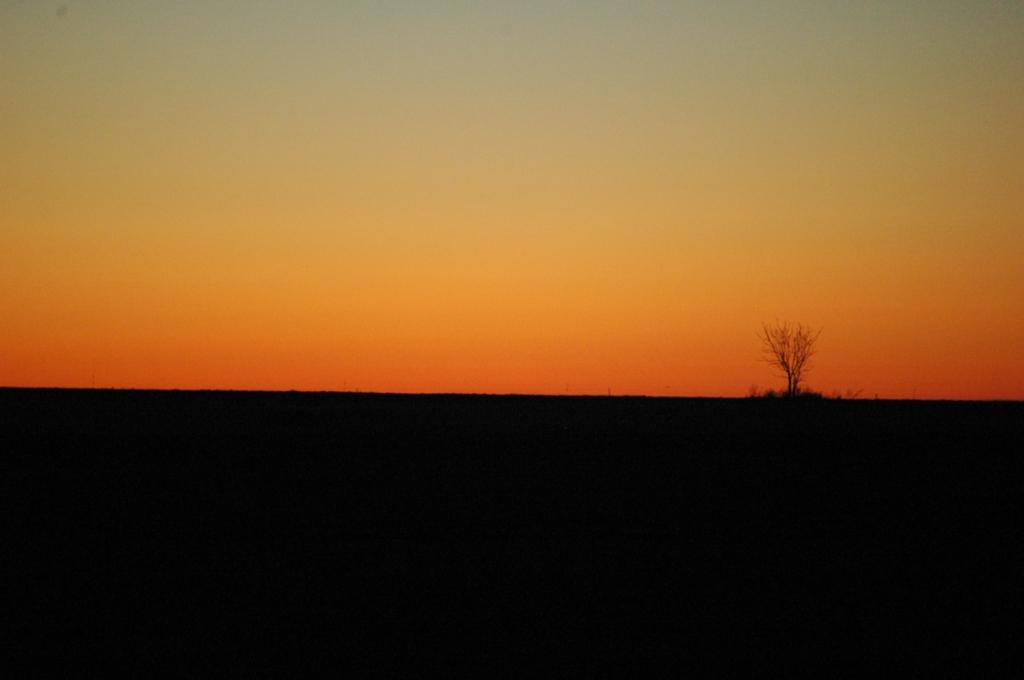 Sunrise at Safe Haven Farm, Haven, KS