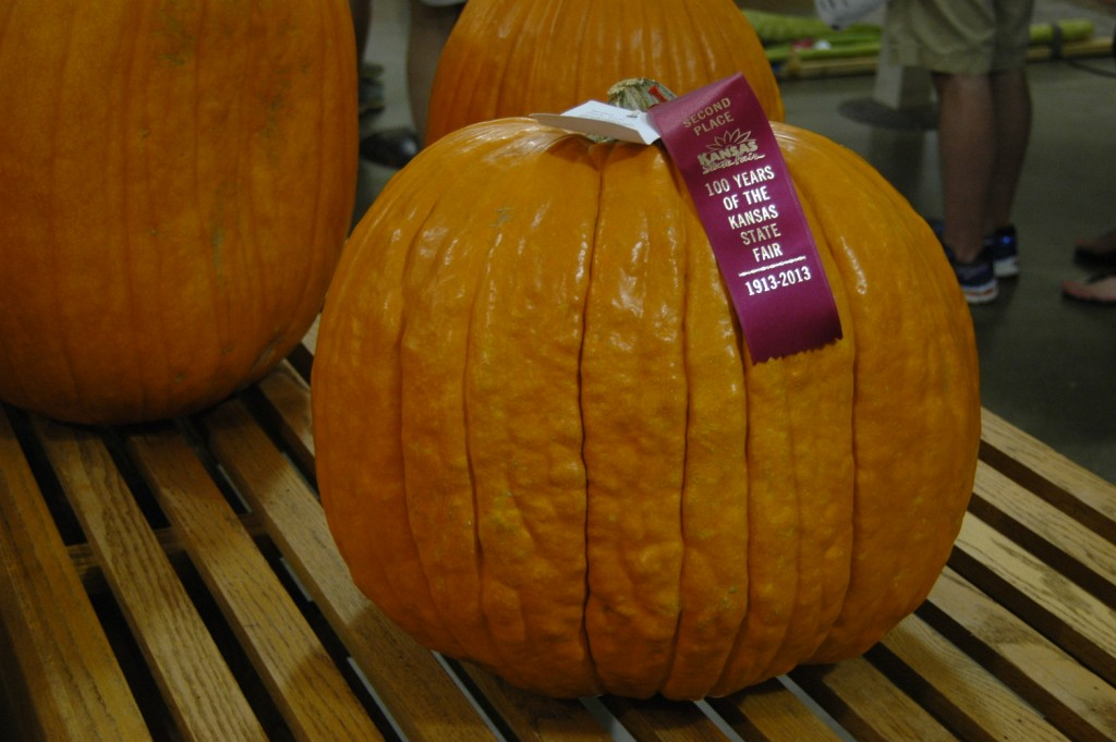 Second-place pumpkin at the 2013 Kansas State Fair, Hutchinson, KS