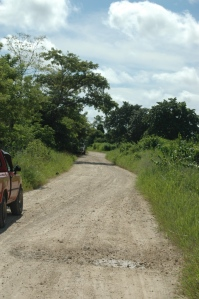 Random dirt road somewhere in the jungle, Peten, Guatemala