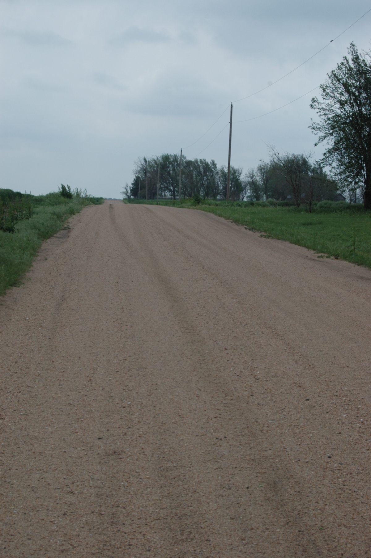 The road that runs beside Safe Haven Farm, Haven, KS