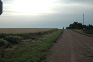 Pleasant Valley Road leading to Safe Haven Farm, Haven, KS