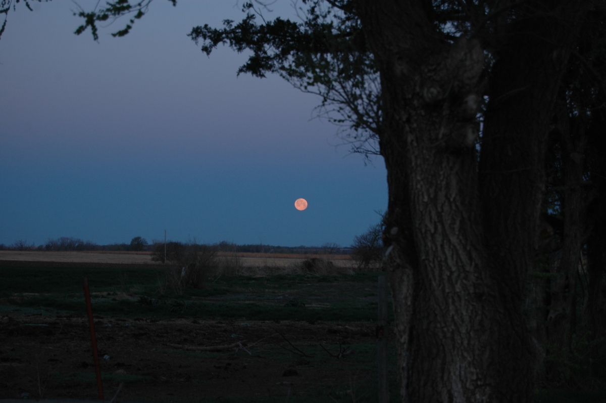 The blood moon of April 2014 setting at Safe Haven Farm, Haven, KS