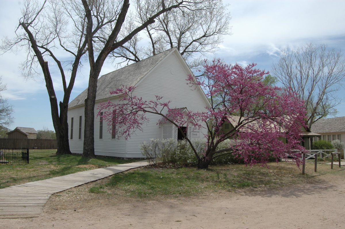 Blossoming redbud tree outside the church at the Old Cowtown Museum, Wichita, KS