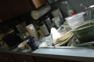 The kitchen counter at Safe Haven Farm after a week (or two or three), Haven, KS