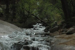Rushing river on the way to Helen Hunt Falls, Colorado Springs, CO