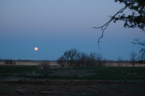 Moon setting at Safe Haven Farm, Haven, KS