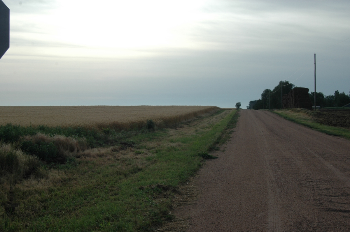 The road leading to Safe Haven Farm, Haven, KS