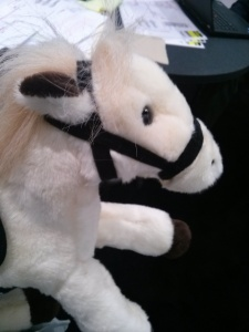 My prize stuffed pony! - Las Vegas, NV