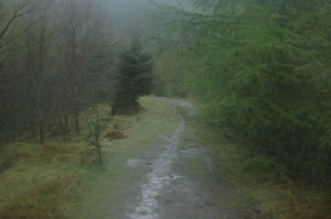 The muddy path to Creag an Tuirc, Balquhidder, Scotland